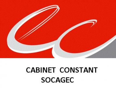 SA CABINET CONSTANT