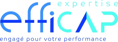 EFFICAP EXPERTISE (Cabinet Vincent CHEVALIER)