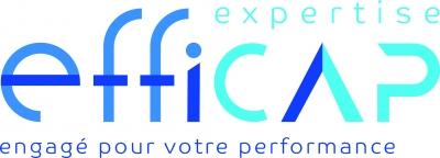 EFFICAP EXPERTISE (Cabinet Vincent CHEVALIER)